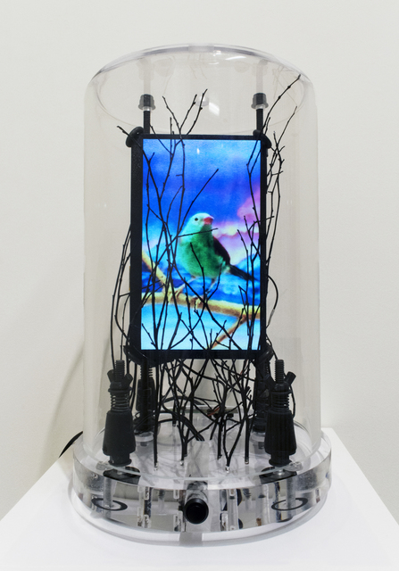 , 'Lost Bird,' , Robischon Gallery