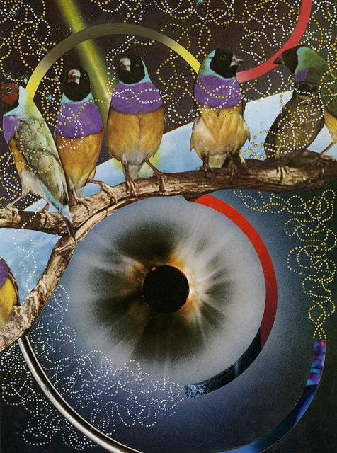 Hisham Akira Bharoocha, 'A Bird's Eye View', 2018, SNOW Contemporary