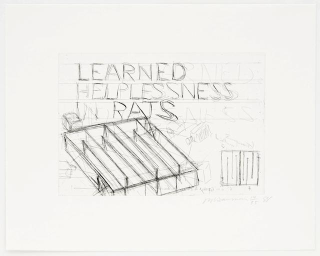 , 'Learned Helplessness in Rats,' 1988, Brooke Alexander, Inc.