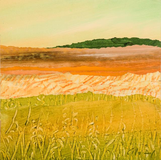 , 'Fields,' 2016, Sladers Yard
