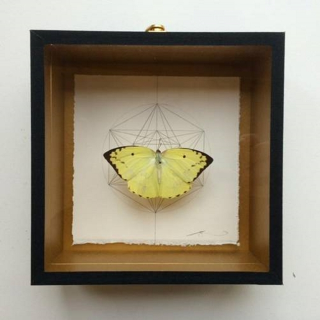 , 'Geometry of the Butterfly – Sand Brown,' 2015, Lawrence Alkin Gallery