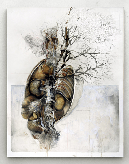 , 'The roots made me see, the soil made me breathe,' 2014, Officine dell'Immagine