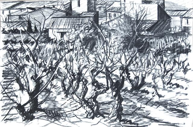 , 'Vines in winter,' 1969, Robert Eagle Fine Art
