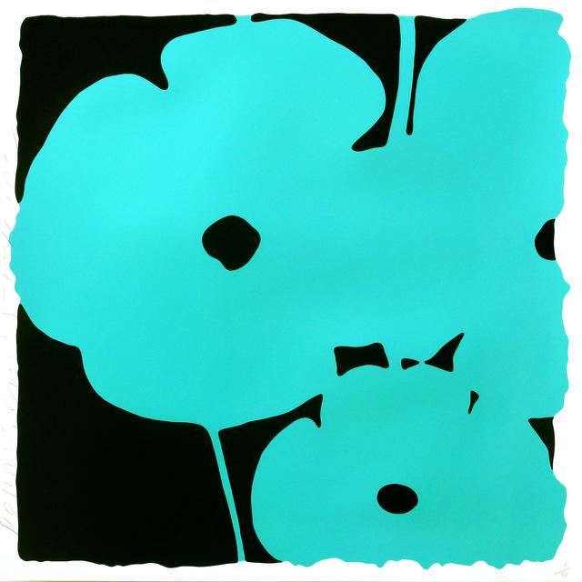, 'Poppies June 5 (Aqua),' 2011, Newzones