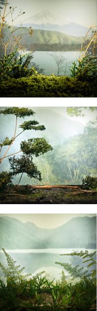 , 'Vistas del Japón,' 2015, Eme Espacio de Arte