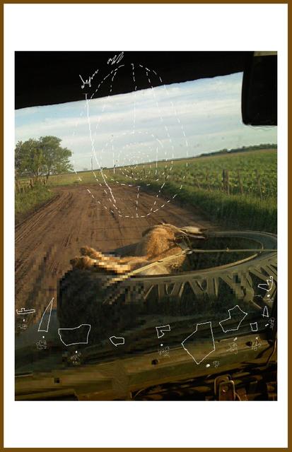 , 'Field notes #1,' 2014, Ruth Benzacar Galería de Arte