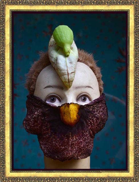 , 'Aristolochia fbt,' 2014, Celma Albuquerque Galeria de Arte