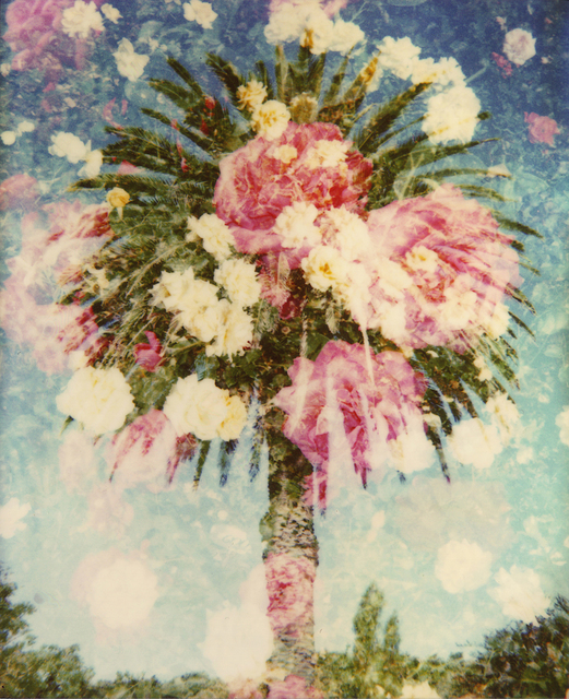 , 'Starburst Palm ,' 2010, Sanderson Contemporary Art