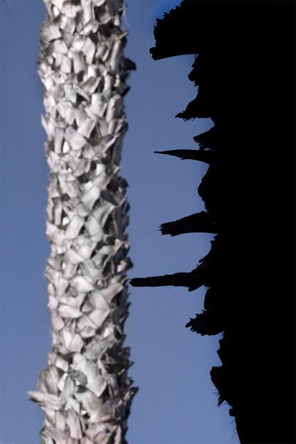 , 'Vertical Horizon #1,' 2016, Galerie Thierry Bigaignon