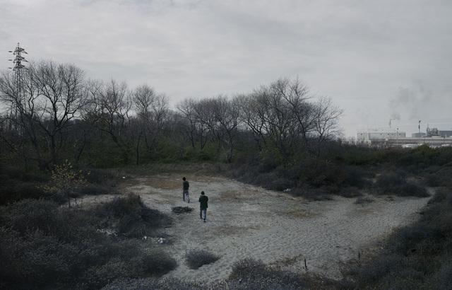 , 'Les bois de Calais,' 2007, Maison Particulière