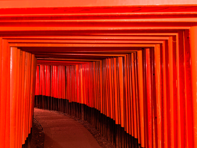 , 'Fushimi Inari-Taisha 5,' 2016, Hollis Taggart Galleries