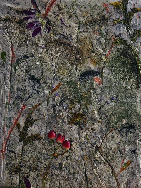 , 'Flowers for Lisa #4,' 2016, Edwynn Houk Gallery