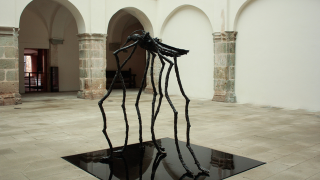 , 'TIPULA,' 2017, Nuun Espacio de Arte