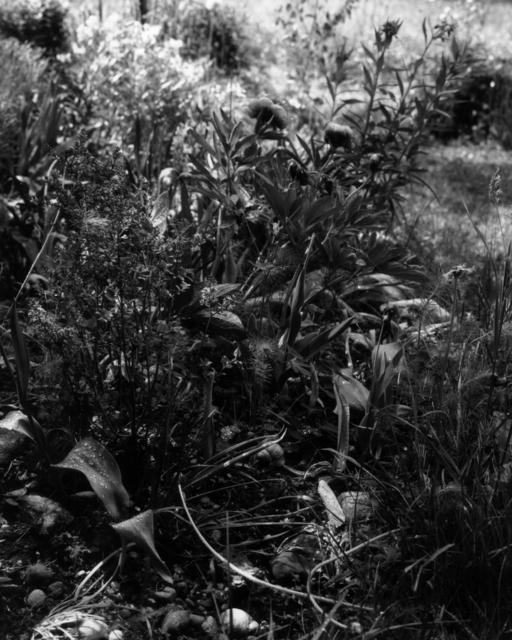 , 'Gartenstück Nr. 09, Weipertshausen,' 2018, Galerie Jordanow