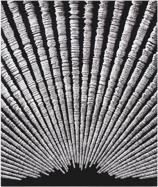 , 'Zamanın Tortuları / Residiues of Time ,' 2015, Sanatorium