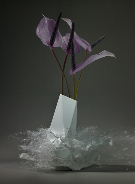 , 'Anthurium,' 2015, Foley Gallery