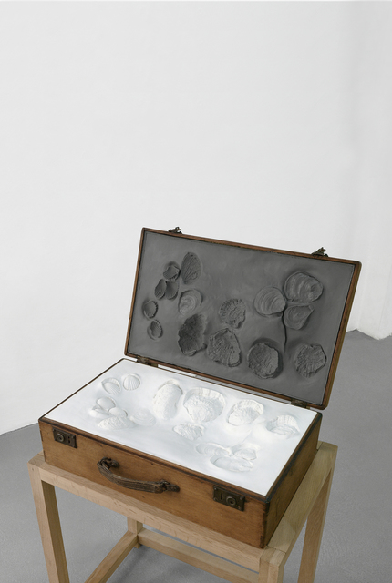 Thomas Tronel-Gauthier, 'Valise aux morphogénèses', 2011, 22,48m2