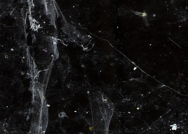 , 'Spindelvæv / Spiders Web,' 2018, Galleri Bo Bjerggaard