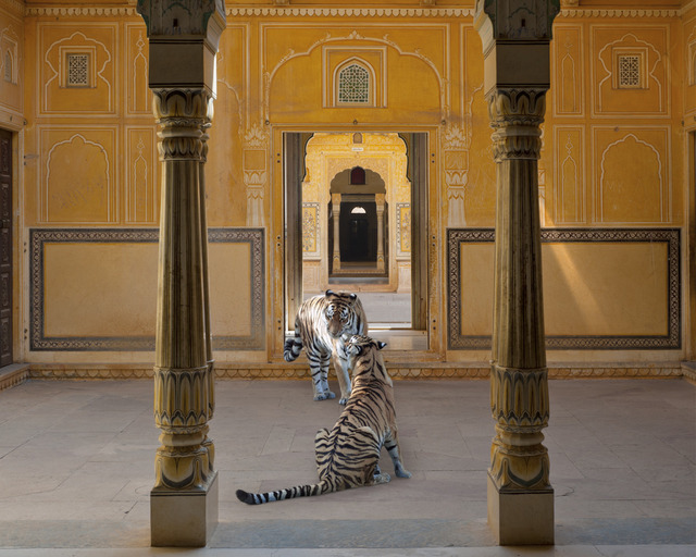 , 'The Arrow of Kama, Nehargarh Fort, Jaipur,' , Danziger Gallery