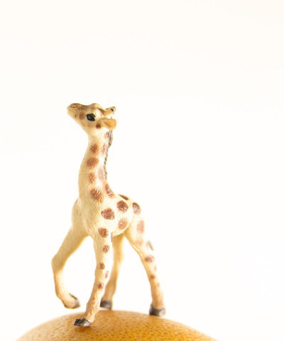 , 'Grapefruit the Giraffe,' , ArtStar