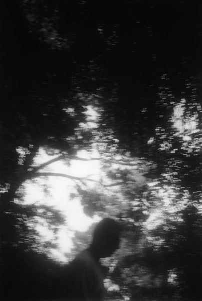 , 'Landscape 35,' 1997-2012, Upfor