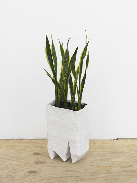 , 'Planter,' 2016, Johannes Vogt Gallery