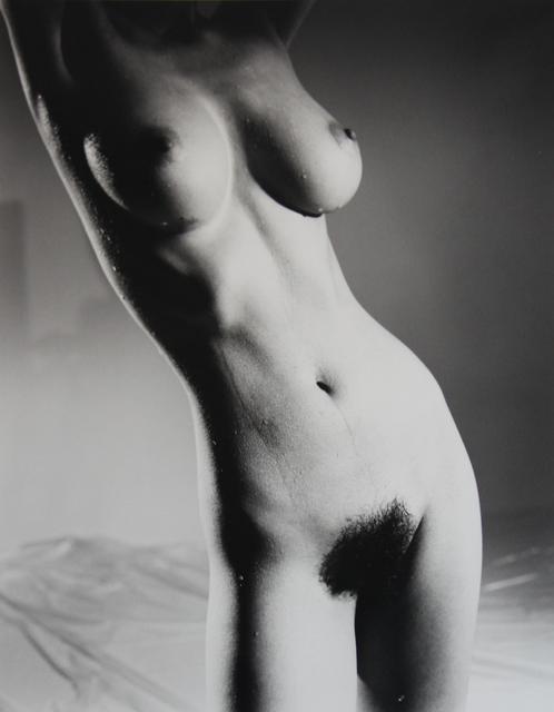 Nobuyoshi Araki, 'Bodyscapes, 1996', 2005, Art Portfolio, Inc.