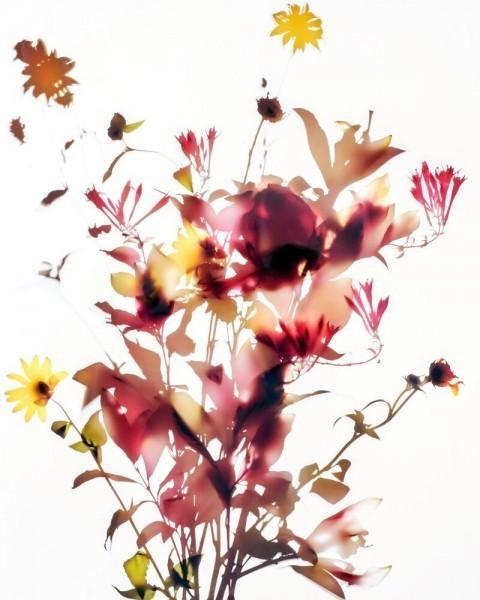 Carol Henry, 'Canyon', Not available, Susan Spiritus Gallery