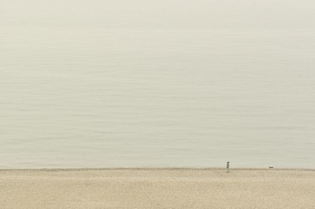 Tomio Seike, 'Overlook, 14-7328, Brighton', April 2010, Hamiltons Gallery