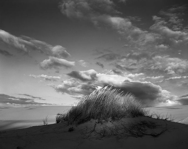 , 'Eel Creek Dunes IV, Oregon,' 1984, Gallery 270
