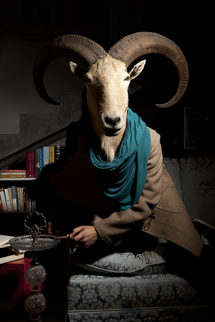 , 'Civilized Goat,' 2014, Galeria Enrique Guerrero
