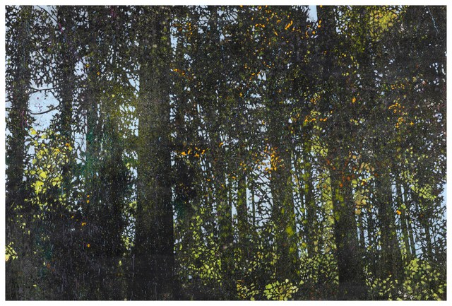, 'Lights in the Forest-2,' 2016, Liang Gallery