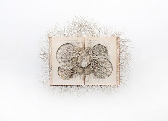 Barbara Wildenboer, 'Medical History II', 2016, Seager Gray Gallery