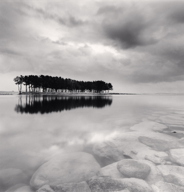 Michael Kenna, 'Pine Trees, Study 3, Wolcheon, Gangwondo, South Korea. 2011', 2011, Patricia Conde Galería