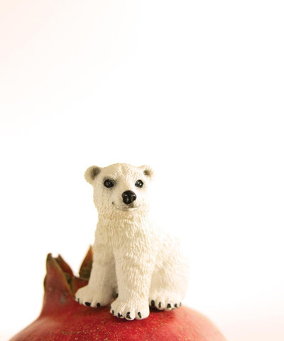 , 'Pomegranate the Polar Bear,' , ArtStar