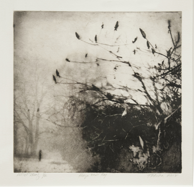 , 'Hedgerow Fog,' 2018, Main Street Arts