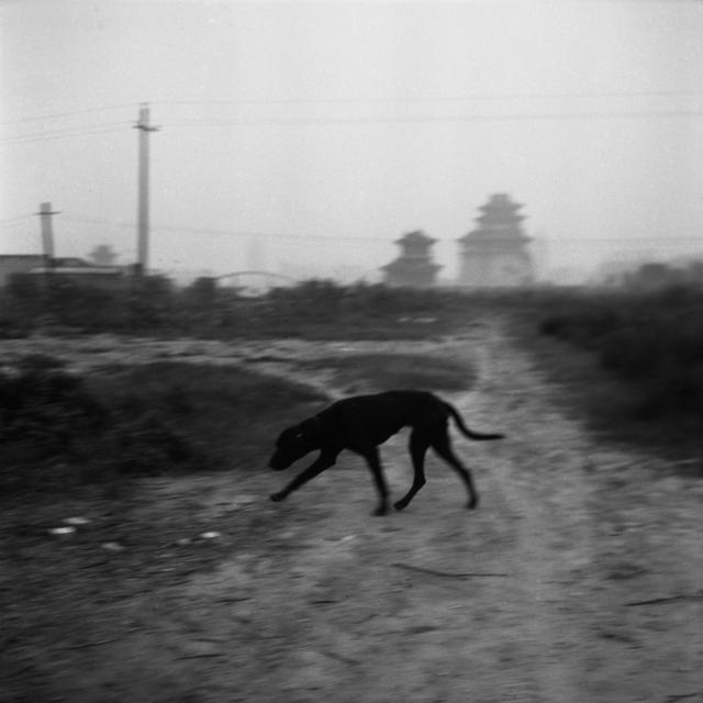 Tian Ye, 'Wandering Slowly 12 [慢慢的游走 12]', 2002-2005, OFOTO&ANART