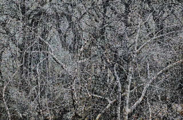 , 'Wilderness,' 2015, Hakgojae Gallery