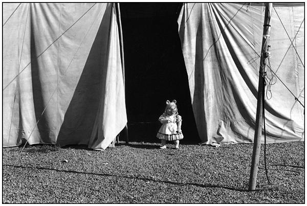 , 'Miss Piggy I,' 1984, Espacio Mínimo