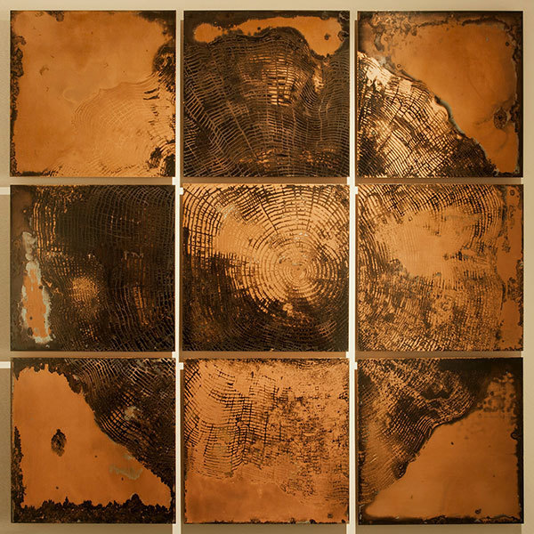 , 'Perenne 2,' 2015, Aria Art Gallery