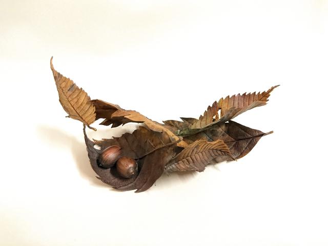 , 'Tiny Piece of Autumn,' 2017, Ippodo Gallery