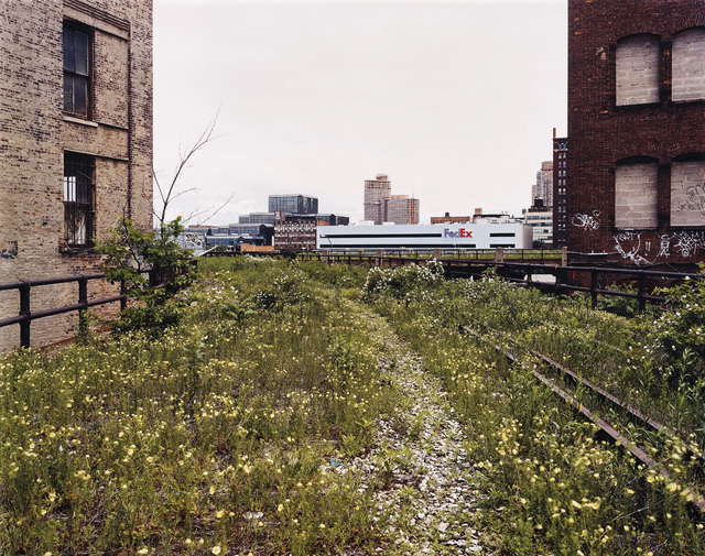 Joel Sternfeld, 'Looking Northwest from 29th Street, June 2000', Phillips