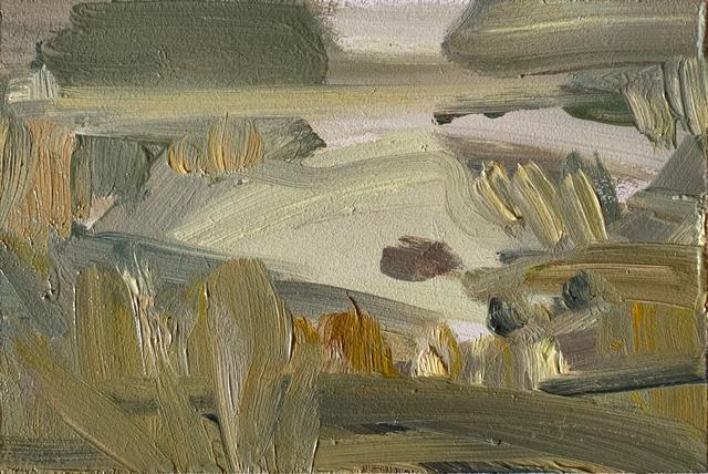 Lindy Guinness, 'Nesting Paradise, Clandeboye Lake', 2019, Candida Stevens Gallery