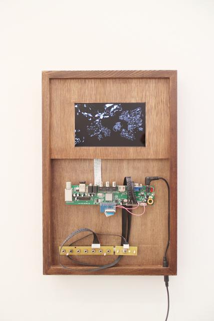 , 'Meta,' 2013, Leo Xu Projects