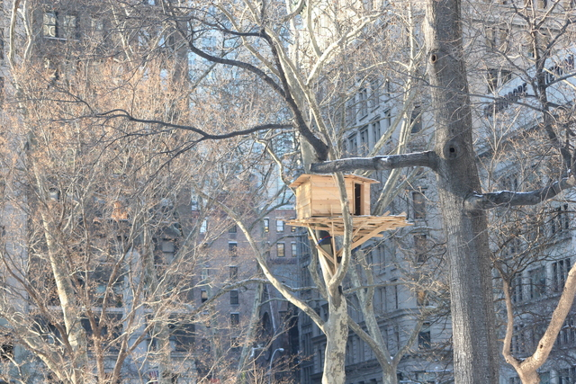, 'Tree Huts,' 2008, Madison Square Park
