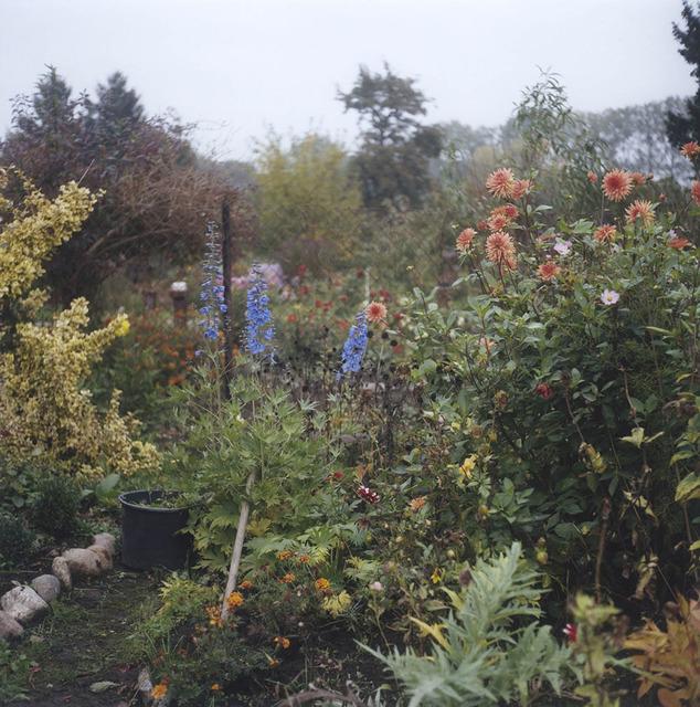 , 'Garten I,' 2013, Galerie f5,6