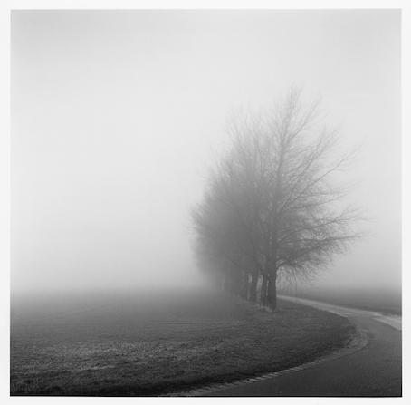 , 'Lapwater Lane,' 2014, The Photographers' Gallery
