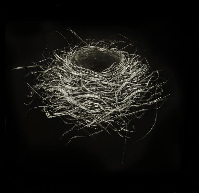 , 'Robin Nest I,' 2016, Callan Contemporary