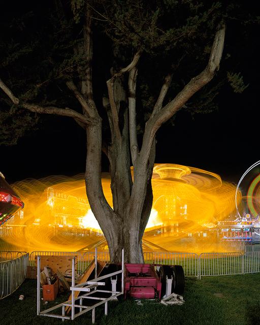 Roger Vail, 'Tree and Octopus', 2001, JAYJAY