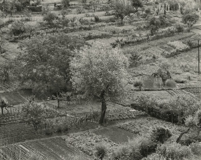 , 'Siena, Italy,' 1975, Pace/MacGill Gallery